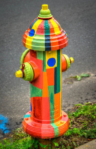 Adopt a Hydrant by JJ / Flickr Creative Commons