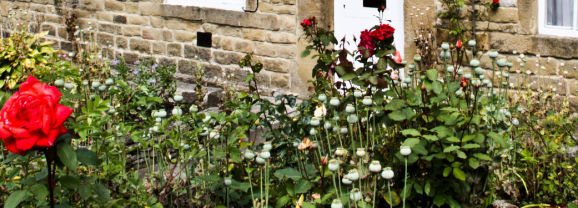 Eyam Village and the Great Plague