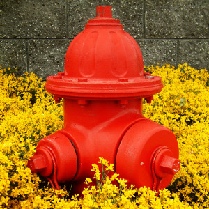 Red Hydrant by Ron A. Parker / Flickr Creative Commons