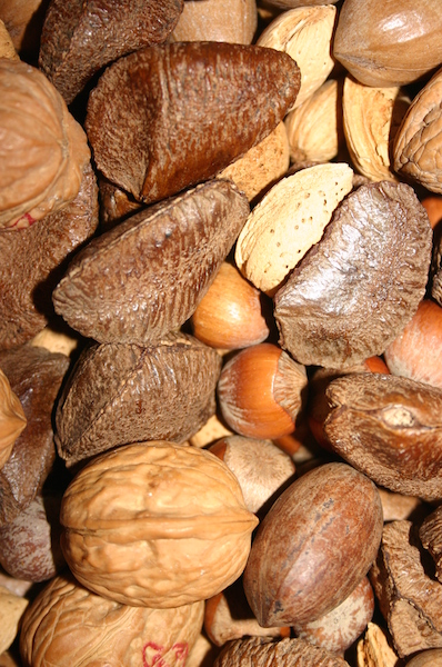 nuts_freeimages