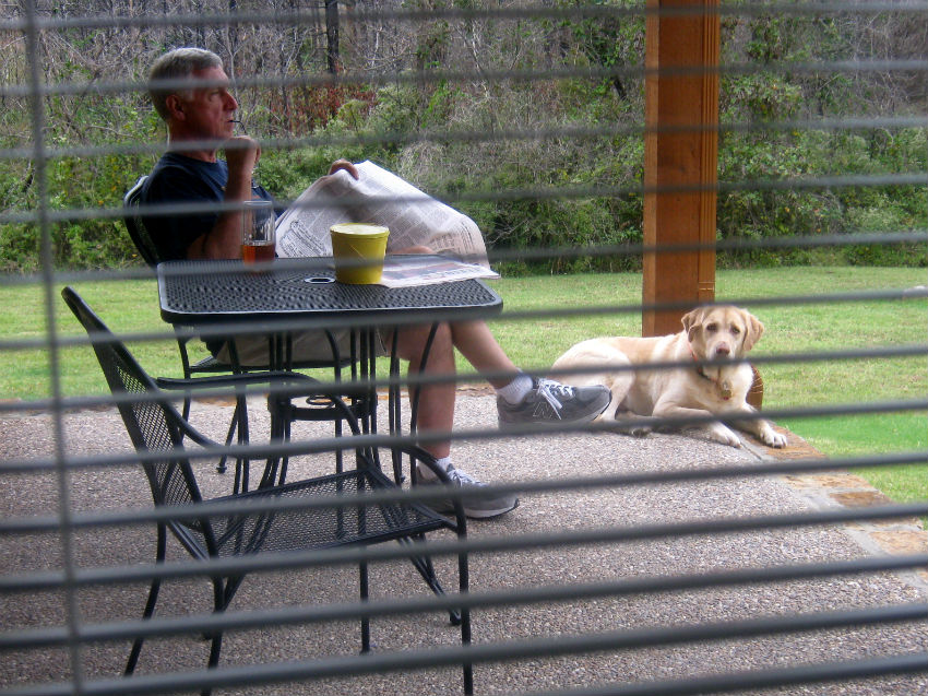 7 Reasons Dogs are Mans Best Friend