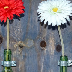 Re-purposing Wine Bottles: Wall Vases