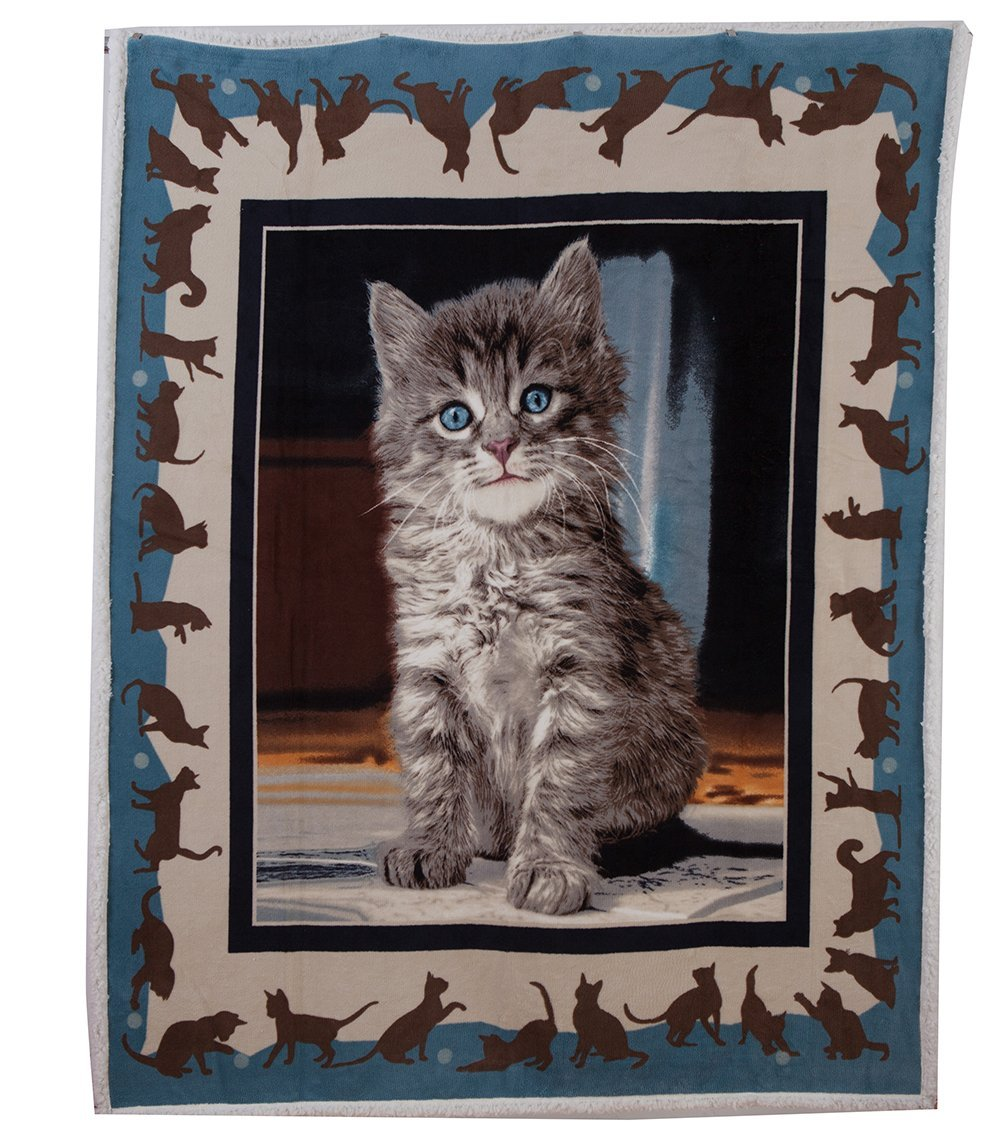 4a.kitten_throw
