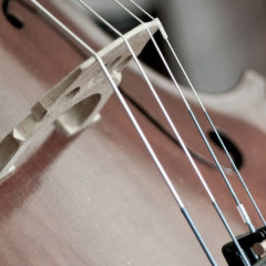Spotlight On:  Bach, Casals, & The Six Suites for 'Cello Solo