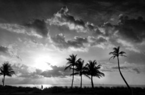 Only The Lonely by Andy Royston/FtLauderdaleSun