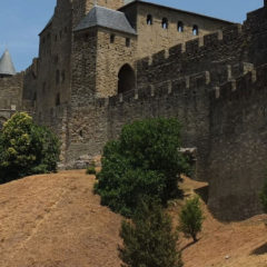 The Avignon Legacy: By Daniel C. Lorti