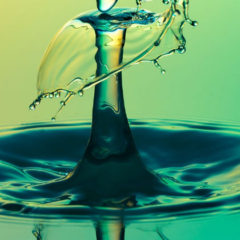 A Drop of Water, by Yvonne Williams Casaus